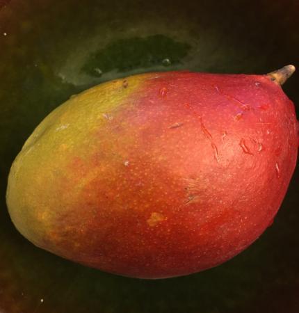 Bild på en mango